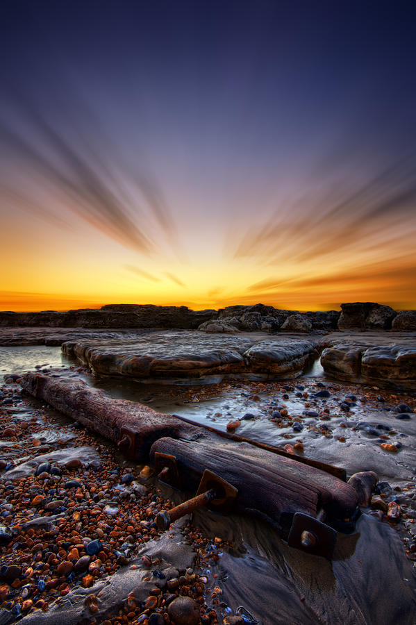 Print Photograph - Driftwood by Mark Leader
