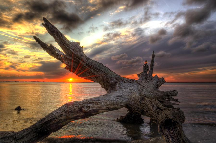 Jekyll Island Photograph - Driftwood Sunset by Greg and Chrystal Mimbs