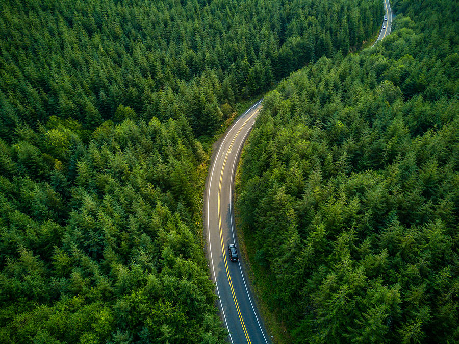 Driving Through Forest - Aerial View Photograph by Halbergman