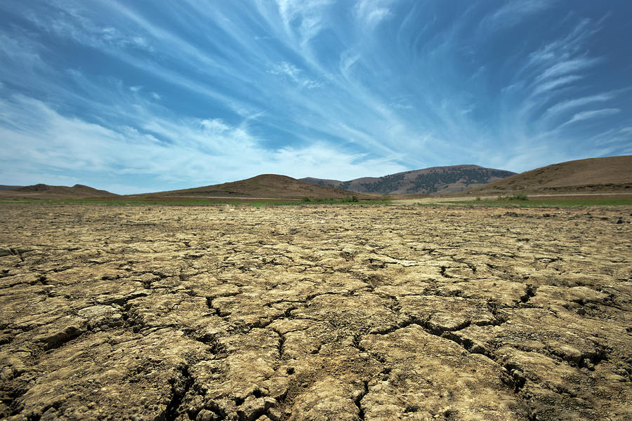 Drought Photograph by Andrewkravchenko