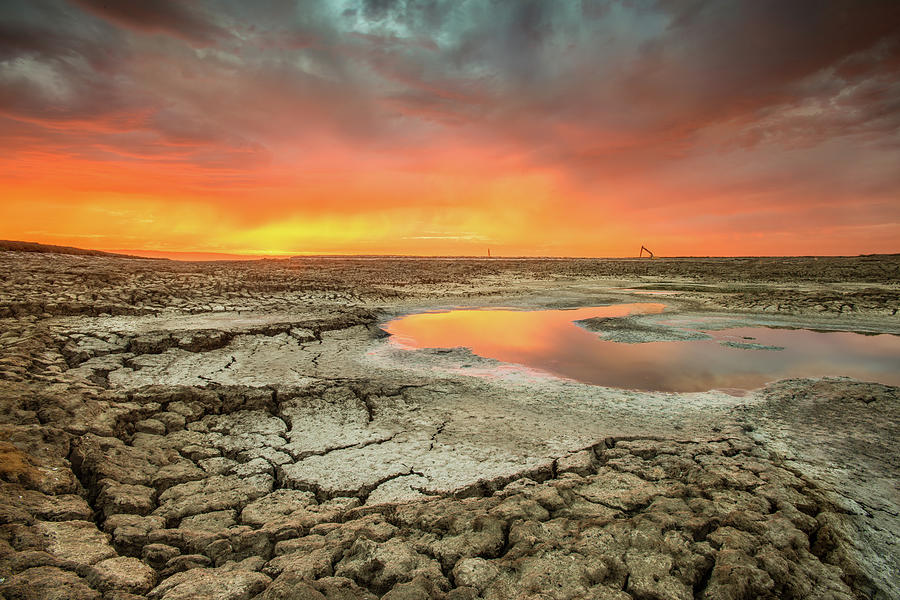 Droughts Bane Photograph by Aaron Meyers