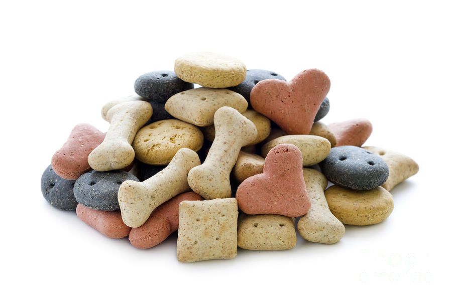 Treatsys Dog Treats