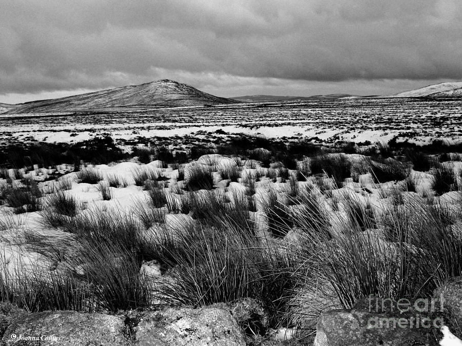 Black And White Photographs Photograph - Dublin Mountains In Winter Ireland by Jo Collins