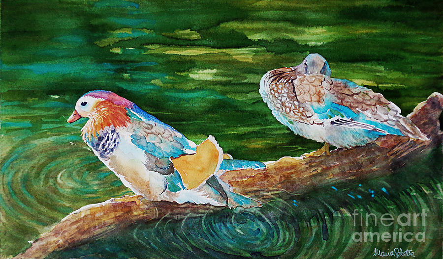 Landscapes Painting - Ducks In A Pond by Marisa Gabetta