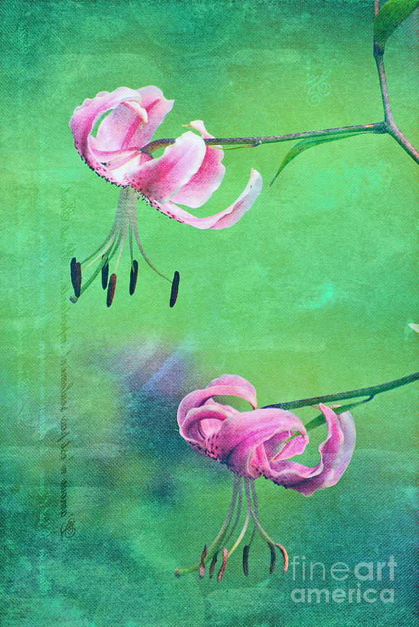 Flowers Photograph - Duet - 9t01b by Variance Collections
