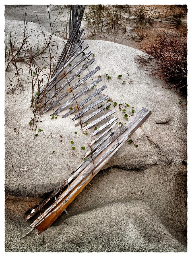 Storm Fence Series 5 by John Pagliuca