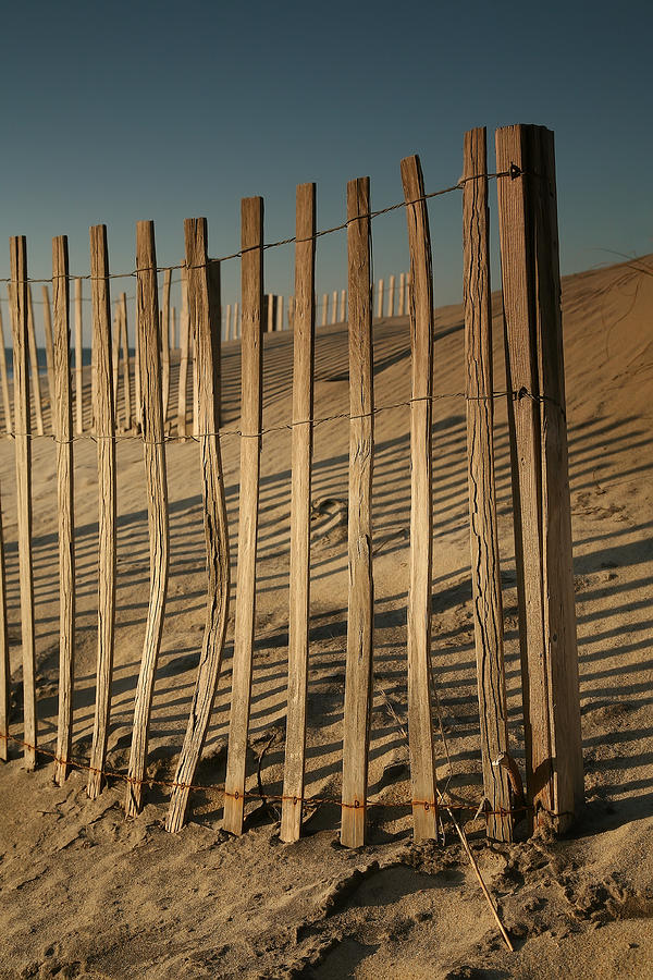 Fence Photograph - Dune Fences Early Morning II by Steven Ainsworth