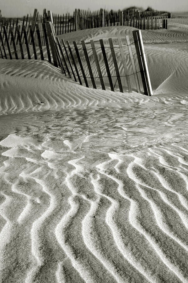 Island Photograph - Dune Patterns II by Steven Ainsworth