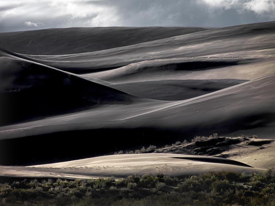 Dunes Photograph - Dune Texture by Leland D Howard