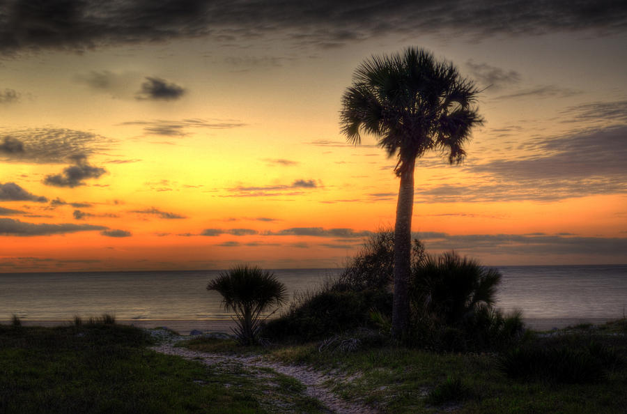 Jekyll Island Photograph - Dune Trail At Sunrise by Greg and Chrystal Mimbs