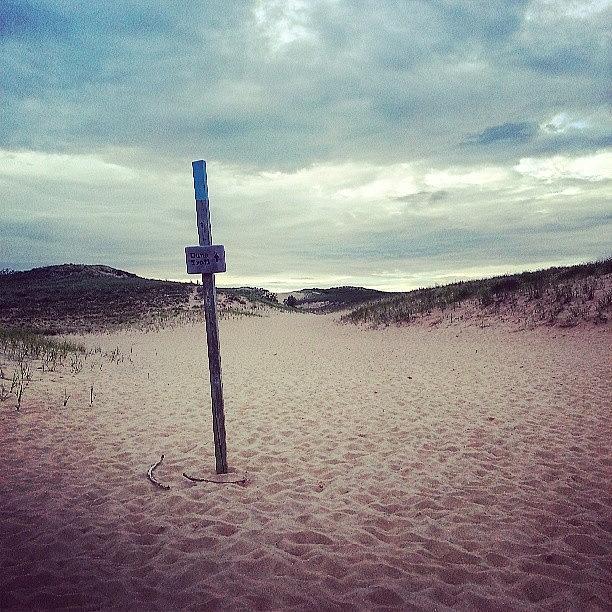 Dunes Photograph - Dune Trail Sleeping Bear by Jill Tuinier