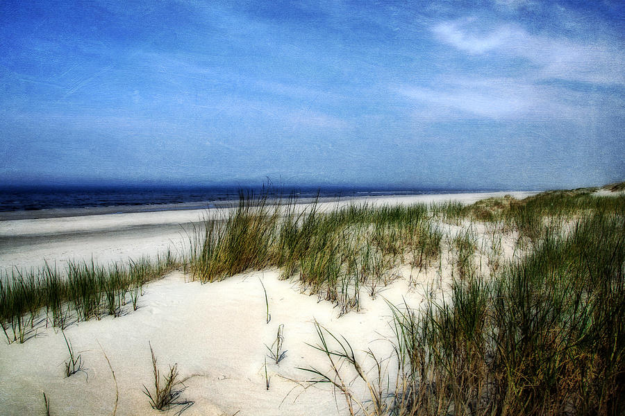 Nature Photograph - Dunes  by Annie Snel