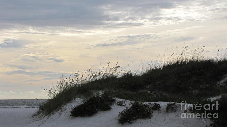 Beach Photograph - Dunes At Dusk by Gayle Melges