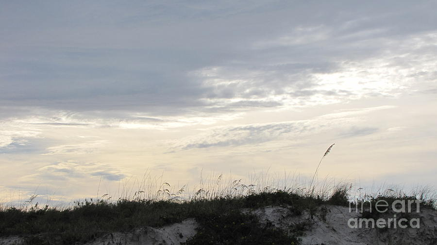 Beach Photograph - Dunes At Dusk II by Gayle Melges
