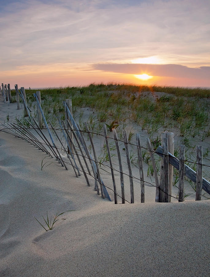 Cape Cod Photograph - Dunes Of Cape Cod by Patrick Downey