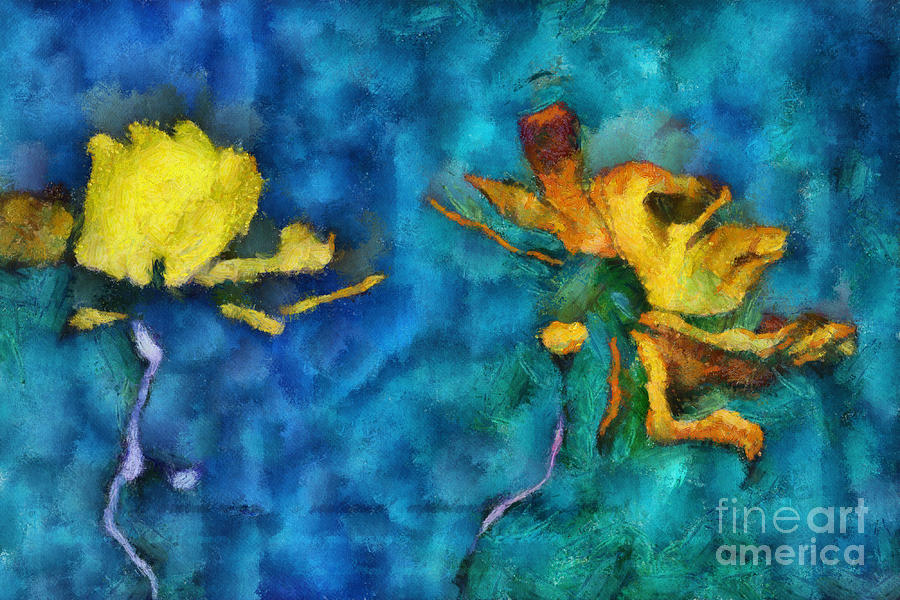 Daisies Digital Art - Duo Daisies - 01c2t5dp01e by Variance Collections