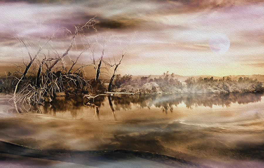 Salton Sea Photograph - Dusk At The Pond by Wayne Wood