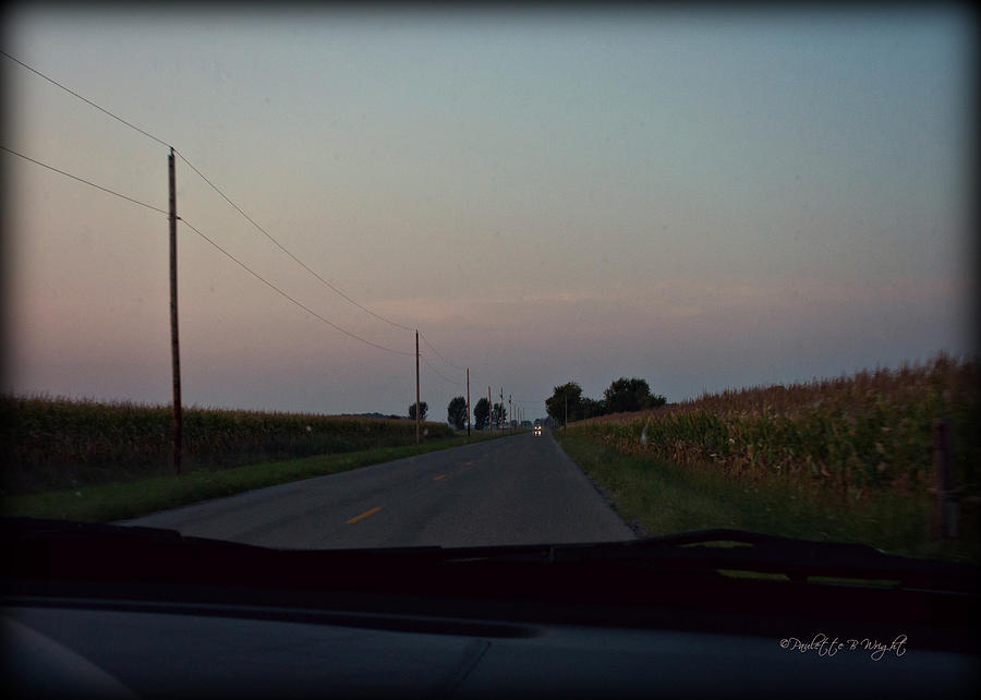 Rural Photograph - Dusk Between The Corn Stalks by Paulette B Wright