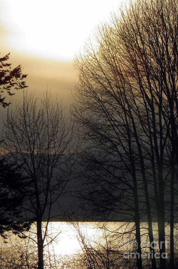 Landscape Photograph - Dusk by Tonya P Smith