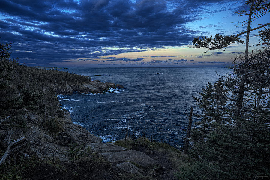 Quoddy Photograph - Dusk Vista At Quoddy Head State Park by Marty Saccone