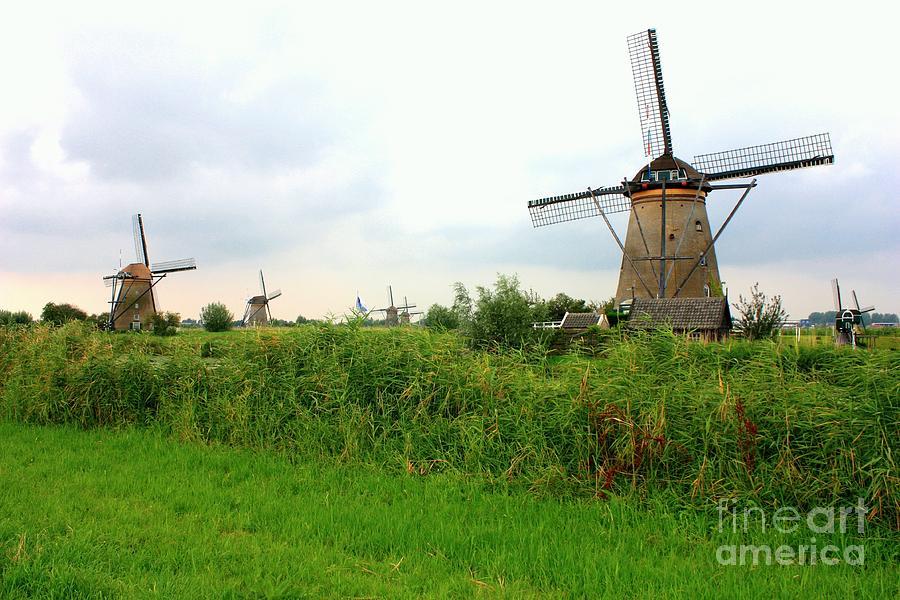 Holland Photograph - Dutch Landscape With Windmills by Carol Groenen