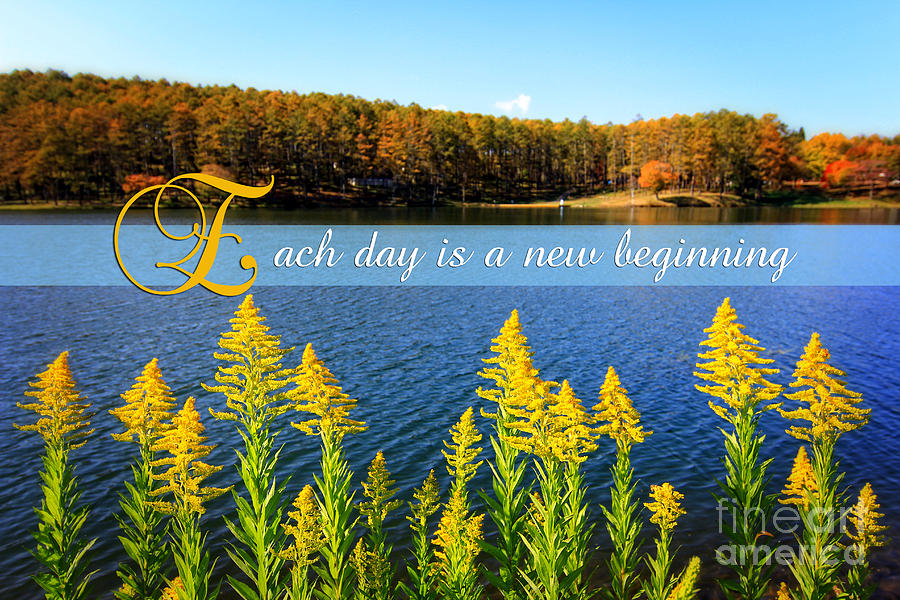 Inspirational Quote Photograph - Each Day Is A New Beginning Lake With Goldenrod by Beverly Claire Kaiya