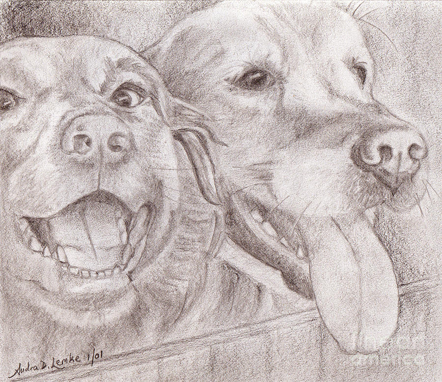 Canine Drawing - Eager Best Friends by Audra D Lemke