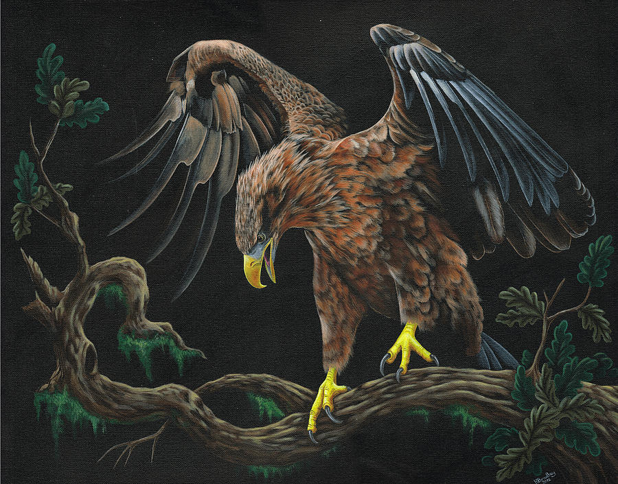 Bird Painting - Eagle In Darkness by Heather Bradley