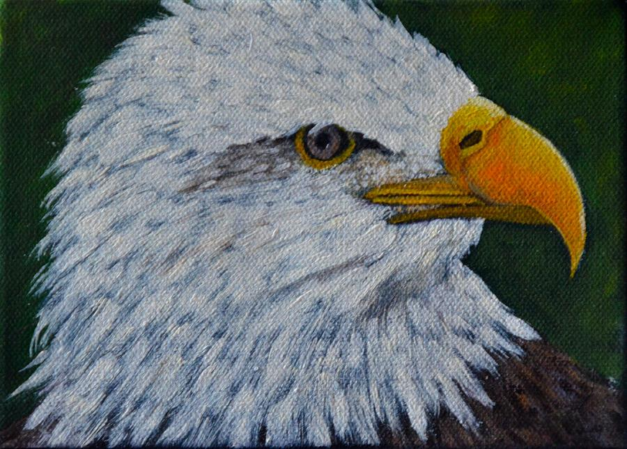Eagle Painting by Marsha Thornton