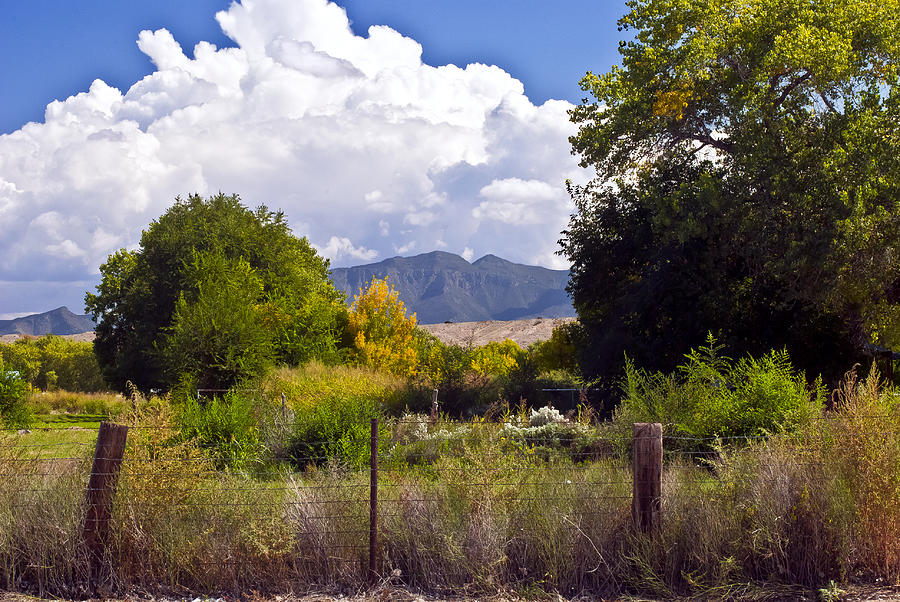 Landscape Photograph - Early Fall by Don Durante Jr