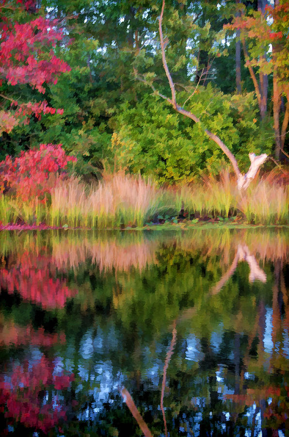 Fall Photograph - Early Fall Reflection by Beth Sawickie