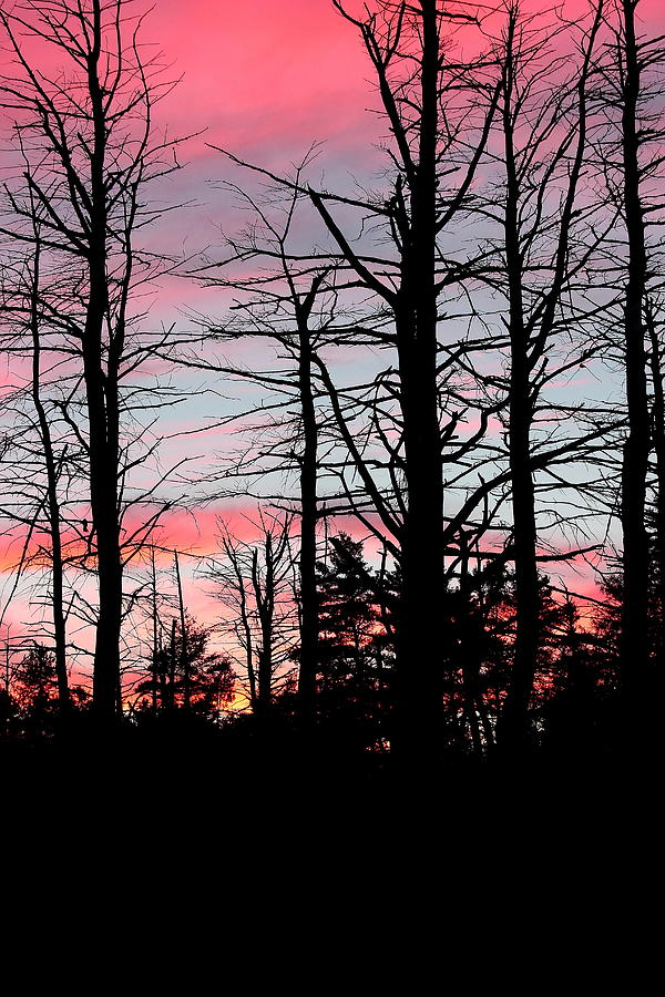 Evening Photograph - Early Fall Sky Vi by Brian Lucia