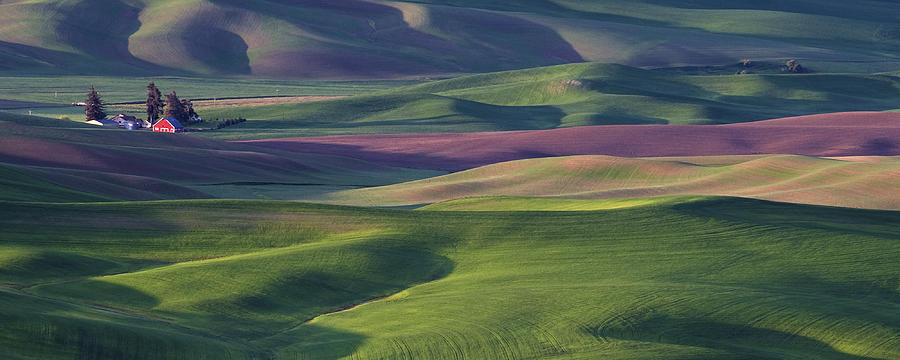 Usa Photograph - Early Light In The Palouse by Latah Trail Foundation