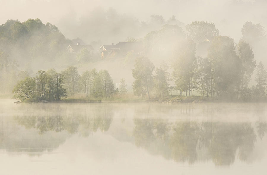 Early Photograph - Early Morning. by Allan Wallberg