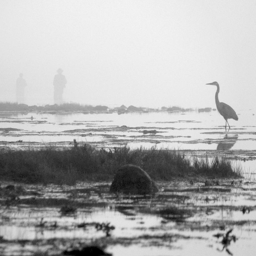 River Photograph - Early Morning Fog by Mike McGlothlen