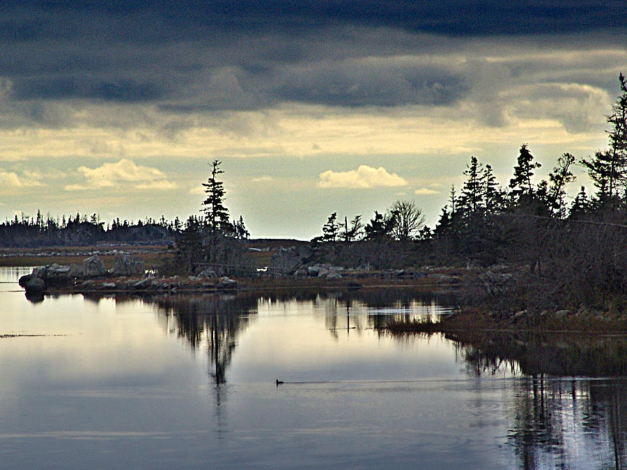 Canada Photograph - Early Morning In The Salt Marsh by George Cousins