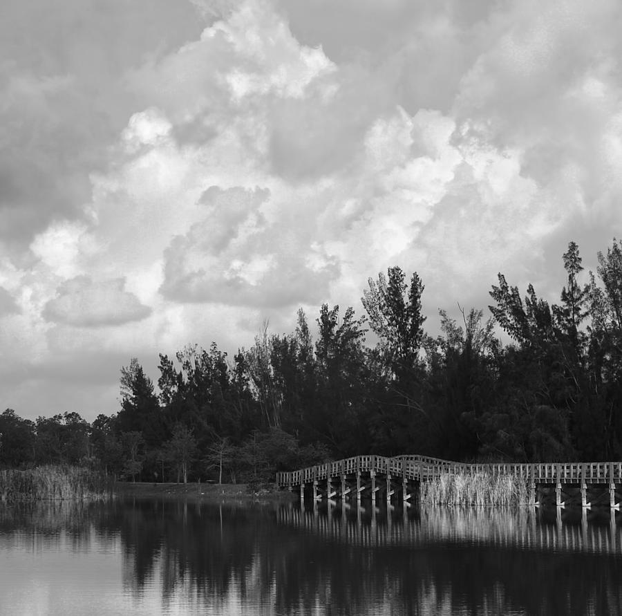 Landscape Photograph - Early Morning by Kim Hojnacki