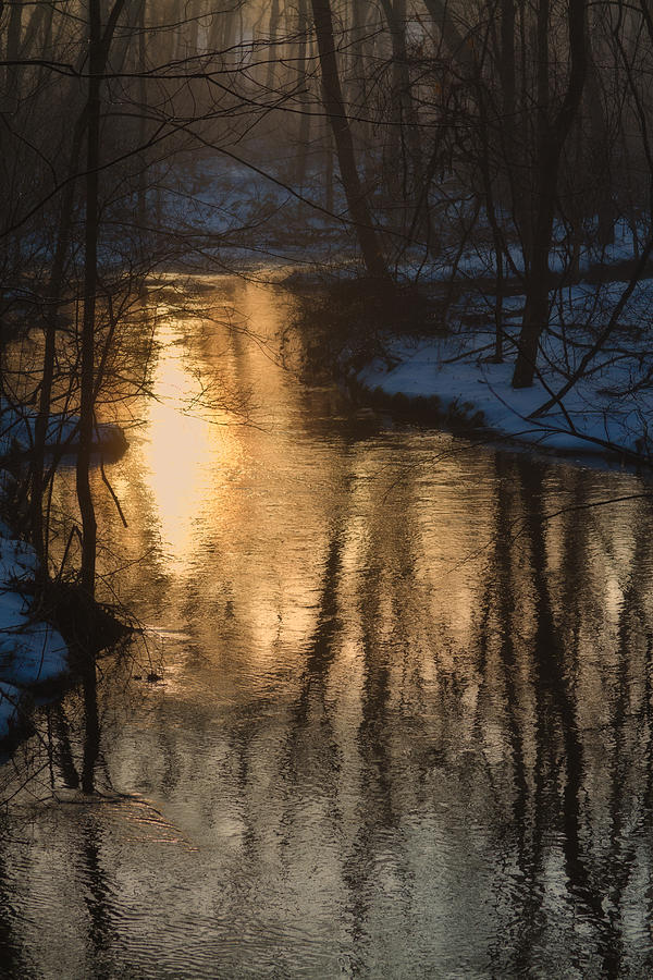 Winter Photograph - Early Winter Morning by Karol Livote