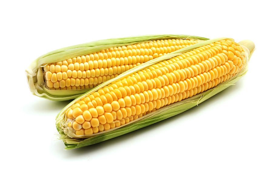 White Background Photograph - Ears of maize by Fabrizio Troiani