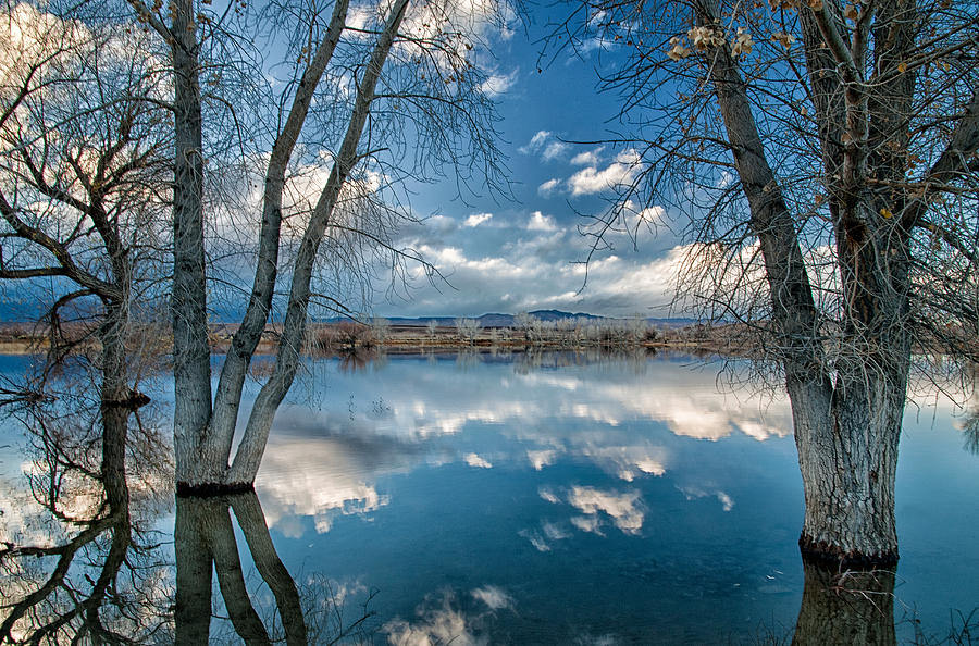 Water Photograph - Earth And Sky by Cat Connor
