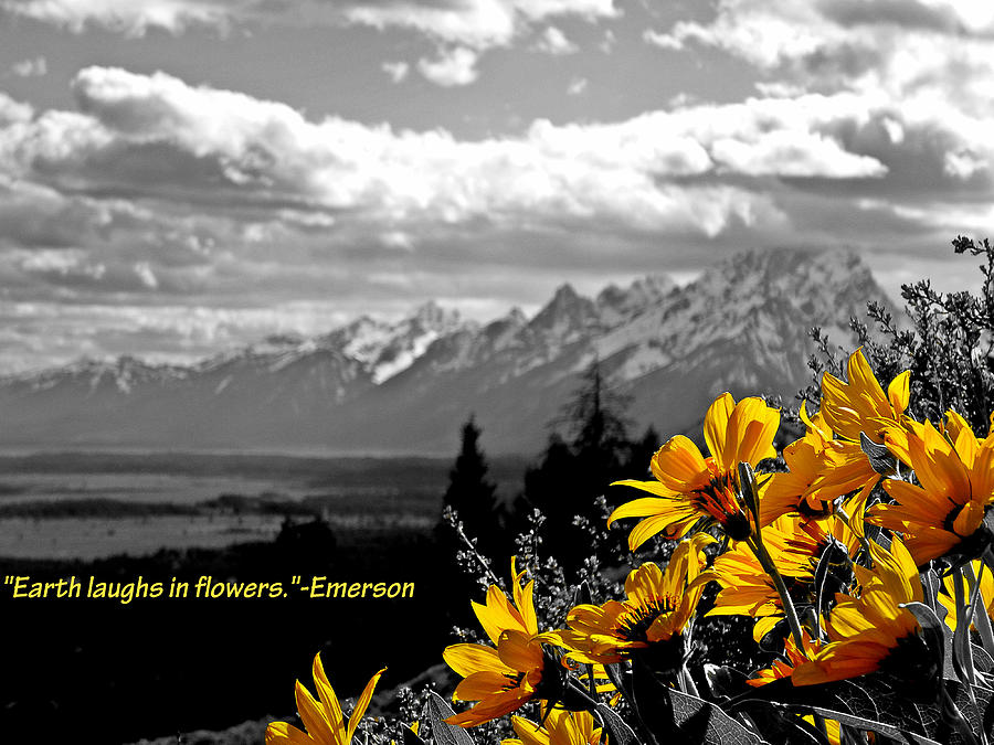 Ralph Waldo Emerson Photograph - Earth Laughs In Flowers by Dan Sproul
