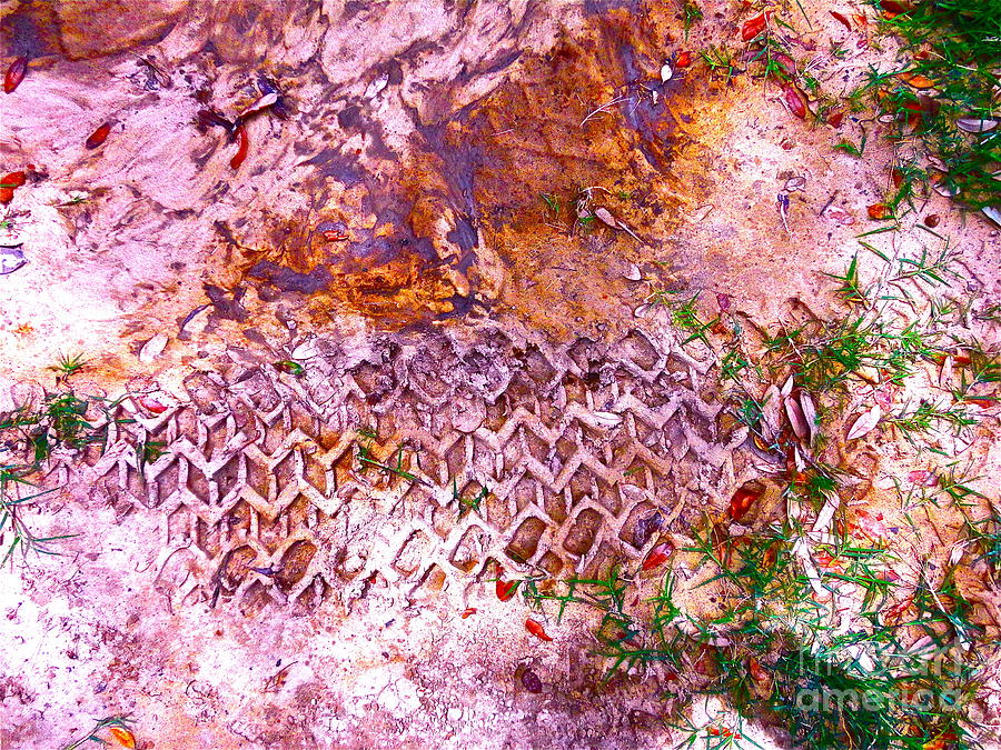 Earth Photograph - Earth Map 1 by Chuck Taylor