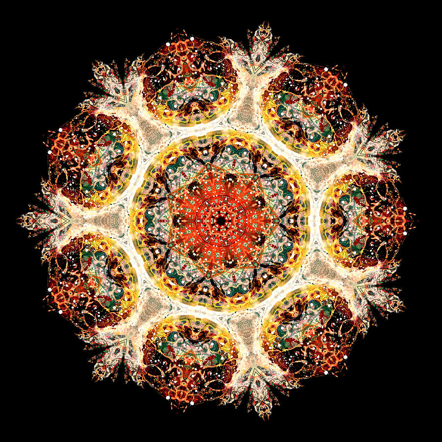 Mandala Photograph - Earthmind II by Lisa Lipsett