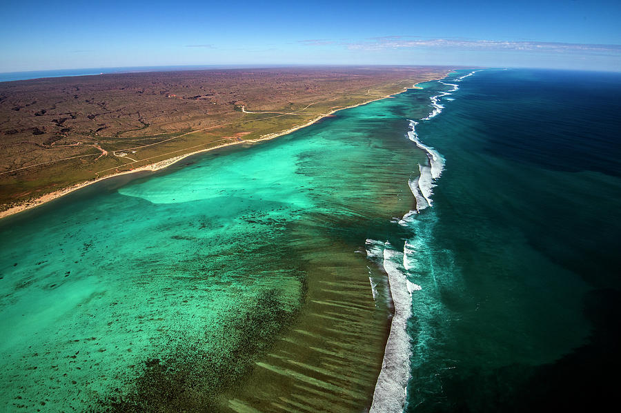 East And West Ningaloo Photograph by Migration Media - Underwater Imaging