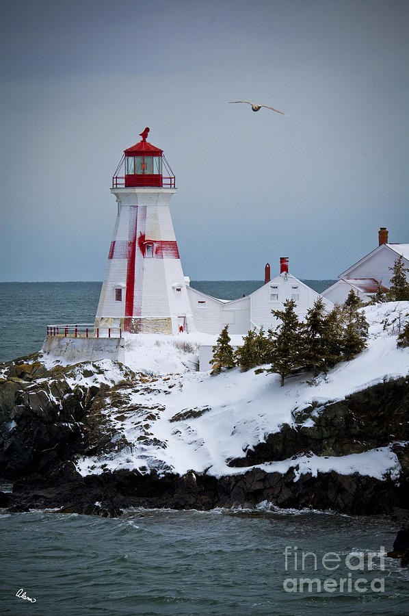 Lighthouse Photograph - East Quoddy Head Lighthouse by Alana Ranney