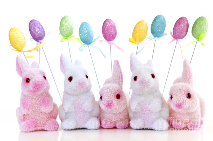 Easter Photograph - Easter Bunny Toys by Elena Elisseeva