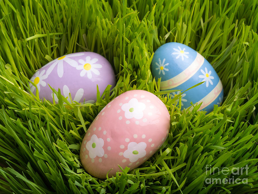Grass Photograph - Easter Eggs In The Grass by Edward Fielding