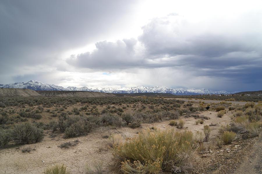 Nevada Photograph - Easter Sunday  by Karen  W Meyer
