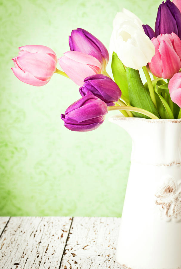 Easter Tulips And Copy Space Photograph by Catlane