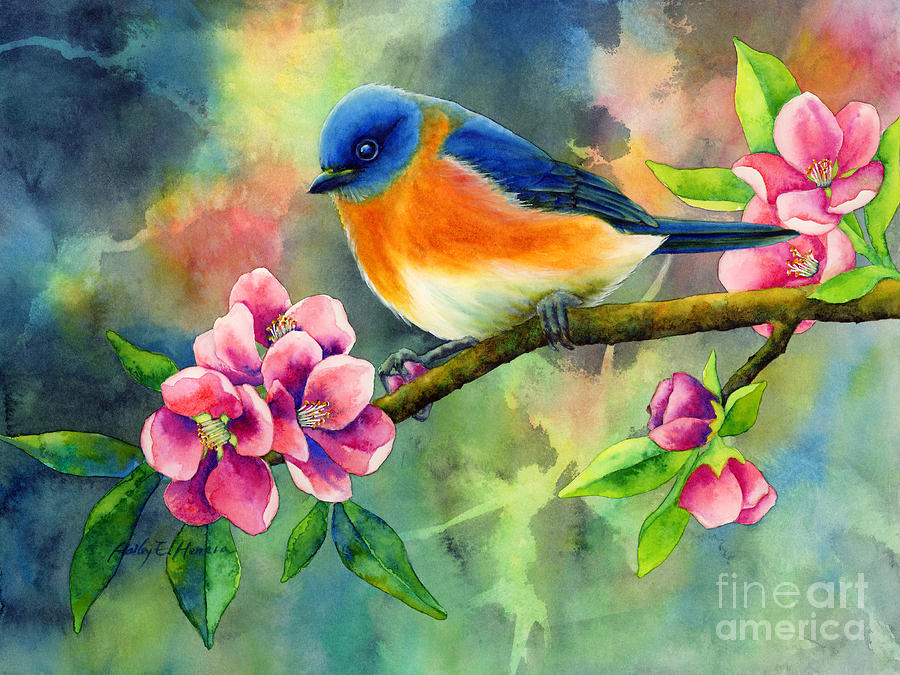 Eastern Bluebird Painting By Hailey E Herrera